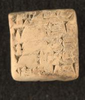Receipt of sheep and goats, 2046 BCE