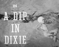 Dip in Dixie