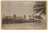 """The Royal Palm"" Hotel in Miami, Fla."
