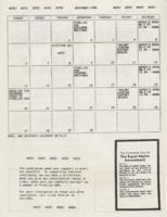 Pinellas NOW newsletter for November 1988