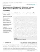Diversification in wild populations of the model organism Anolis carolinensis