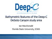 Bathymetric features of the Deep-C Desoto Canyon study area