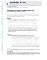 Histone levels are regulated by phosphorylation and ubiquitylation-dependent proteolysis.