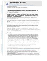 Light-regulated translational control of circadian behavior by eIF4E phosphorylation.