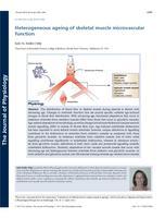 Heterogeneous ageing of skeletal muscle microvascular function.