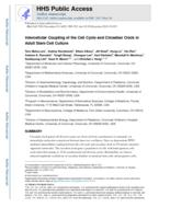 Intercellular Coupling of the Cell Cycle and Circadian Clock in Adult Stem Cell Culture.