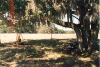 2000, Photo 10