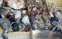 Bird meat shop, ducks