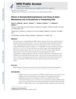 Effects of Neonatal Methamphetamine and Stress on Brain Monoamines and Corticosterone in Preweanling Rats.