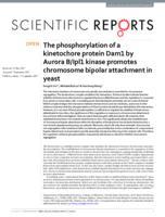 phosphorylation of a kinetochore protein Dam1 by Aurora B/Ipl1 kinase promotes chromosome bipolar attachment in yeast.