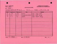 Bead Analysis FS 1303