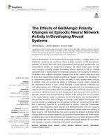 Effects of GABAergic Polarity Changes on Episodic Neural Network Activity in Developing Neural Systems.