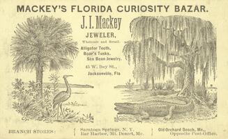 Advertisement for J. I. Mackey, jeweler. Mackey's Florida curiosity bazar.