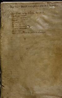 Liber domus Sororum in Coesfeldia ordinis Santi Augustini