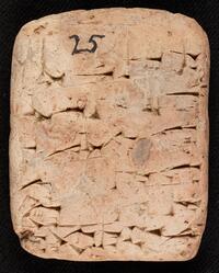 Royal inscription of Sîn-kāšid on a votive tablet