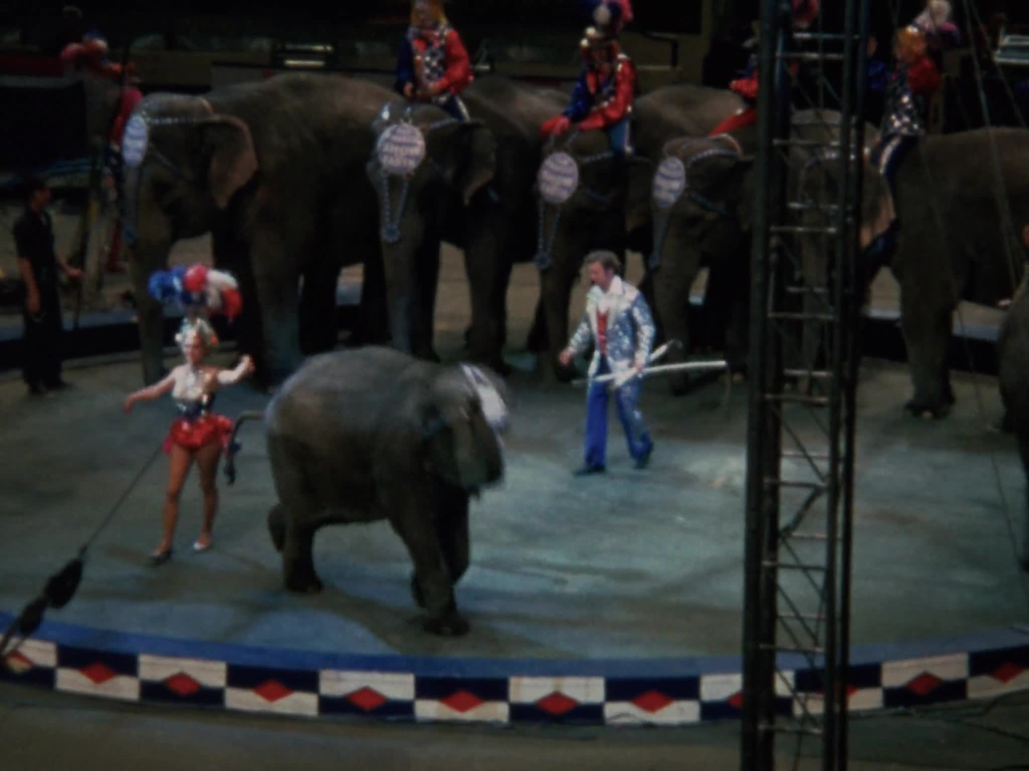 RBBB End of Elephants