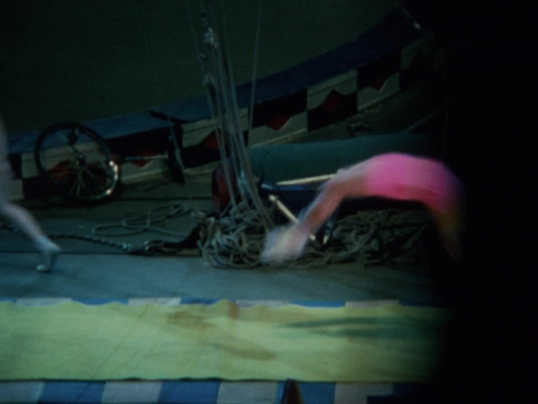 Elvin Bale Single Trapeze Act