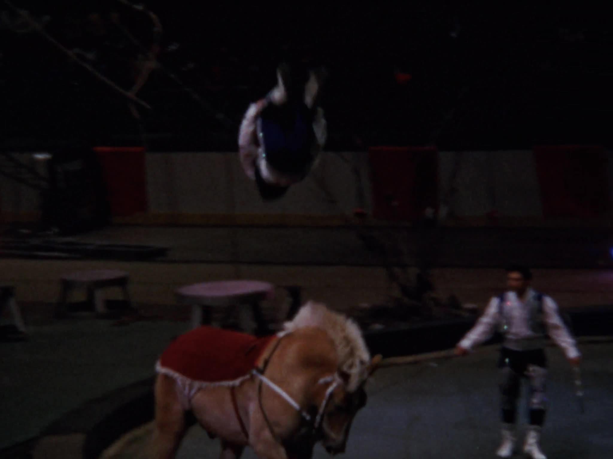 Riding Act, Clown Car, RBBB Blue Unit, Clown Ladder