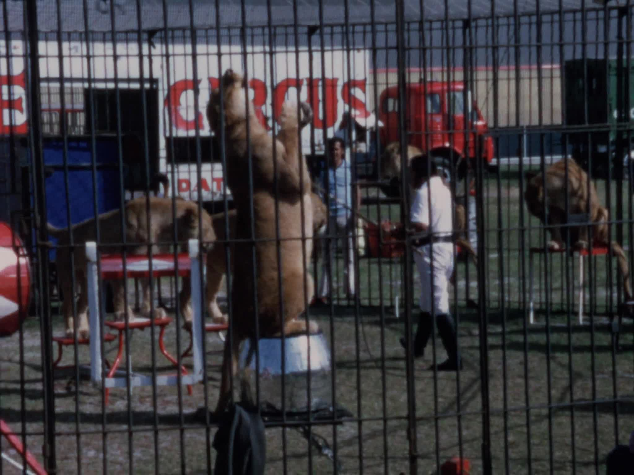 Circus Hall of Fame Outside Arena