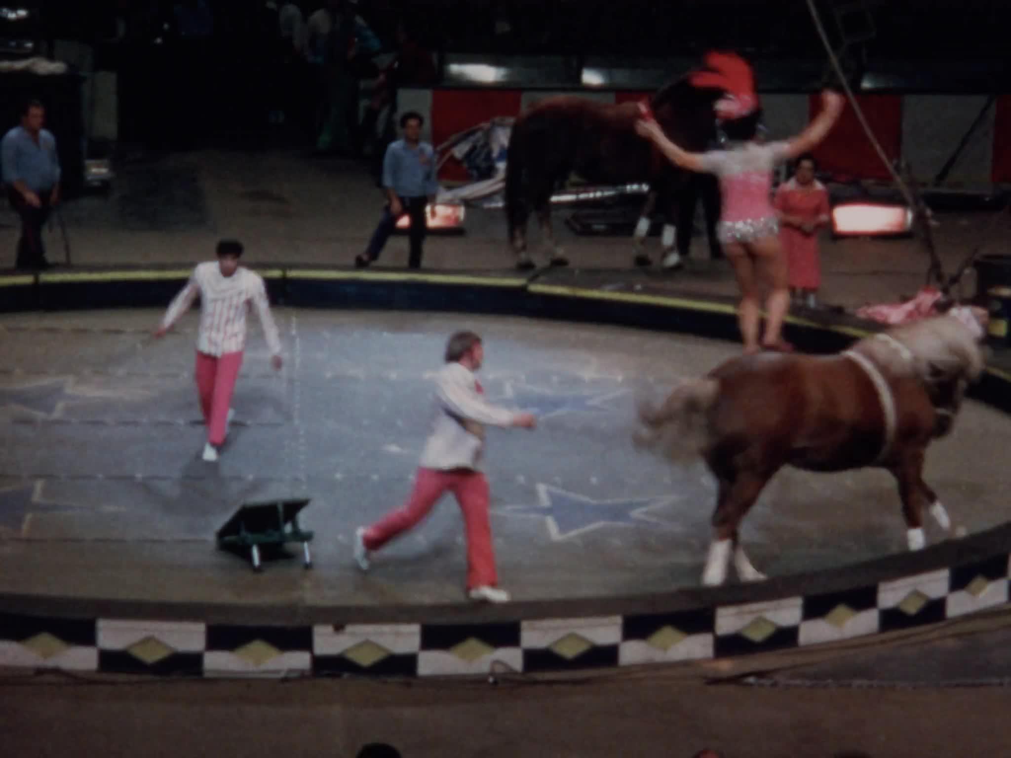 Stevenson Riding Act
