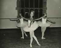 Dancers perform La Bayadere