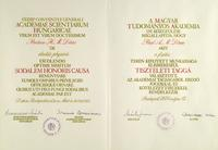 Hungarian Academy of Sciences Award