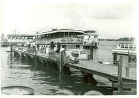 A dock and several tour boats