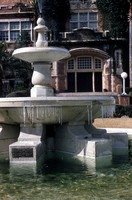 Frozen Westcott Fountain