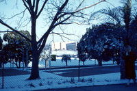 Campus Scene in the Snow