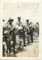 Tobacco Pickers in Dade City