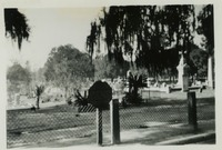 Tallahassee City Cemetery