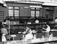 Florida State University students in a chemistry laboratory