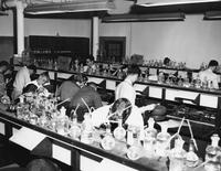 Florida State University chemistry students working in lab