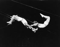 Two performers on a trapeze