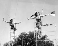 Balancing on a ladder trapeze