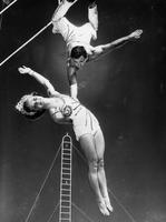 Aerialists performing