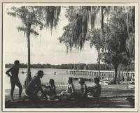 Lakeside view of students under trees at the Reservation