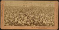 Columbian Exposition 1893. The Surging Sea of Humanity at the opening of the Columbian Exposition.
