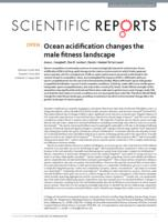 Ocean acidification changes the male fitness landscape