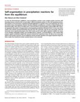 Self-organization in precipitation reactions far from the equilibrium