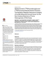 Multiparametric [F-18]Fluorodeoxyglucose/[F-18]Fluoromisonidazole Positron Emission Tomography/Magnetic Resonance Imaging of Locally Advanced Cervical Cancer for the Non-Invasive Detection of Tumor Heterogeneity