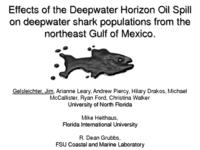 Effects of the Deepwater Horizon Oil Spill on deepwater shark populations from the northeast Gulf of Mexico