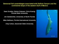 Demersal fish assemblages associated with Desoto Canyon and the continental slope of the eastern Gulf of Mexico