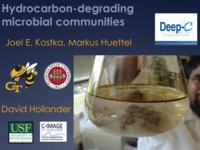 Hydrocarbon-degrading microbial communities