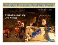 Ecological Processes, Food Web Model