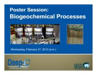 Poster Session: Biogeochemical Processes
