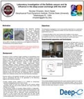Laboratory investigation of the DeSoto canyon and its influence in the deep ocean exchange with the shelf