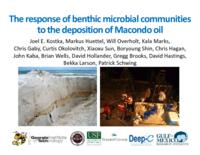 The Response of Benthic Microbial Communities to the Deposition of Macondo Oil