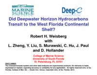Did Deepwater Horizon Hydrocarbons Transit to the West Florida Continental Shelf?