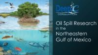 Oil Spill Research in the Northeastern Gulf of Mexico